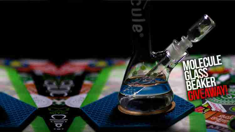 LoudClouds Website Launch/Instagram 2K Giveaway! 14mm Molecule Glass Beaker